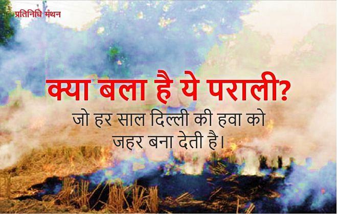 क्या बला है ये पराली? जो हर साल दिल्ली की हवा को जहर बना देती है