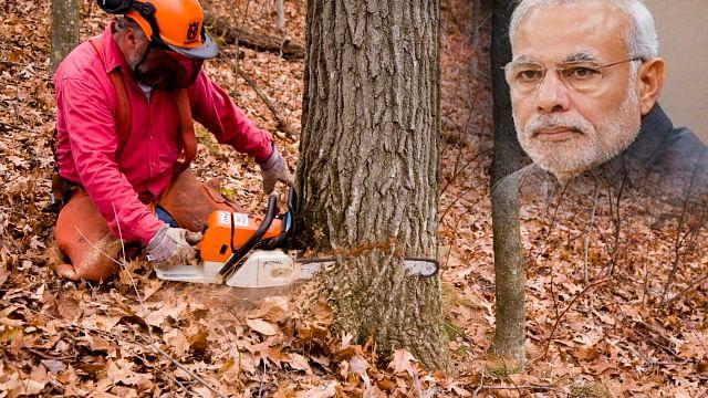 واہ!مودی جی کا ایک منٹ بچانے کے لیے 100 درخت ہوں گے قربان!