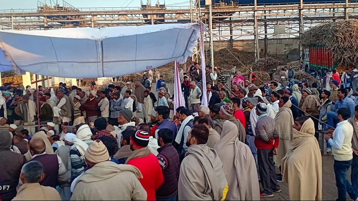 گنا بقایہ کی ادائیگی نہ ہونے سے کسانوں میں ناراضگی، شاملی کلکٹریٹ پر جڑا تالا