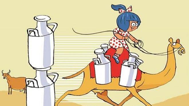 امول نے بازار میں پیش کیا 'اونٹنی' کا دودھ