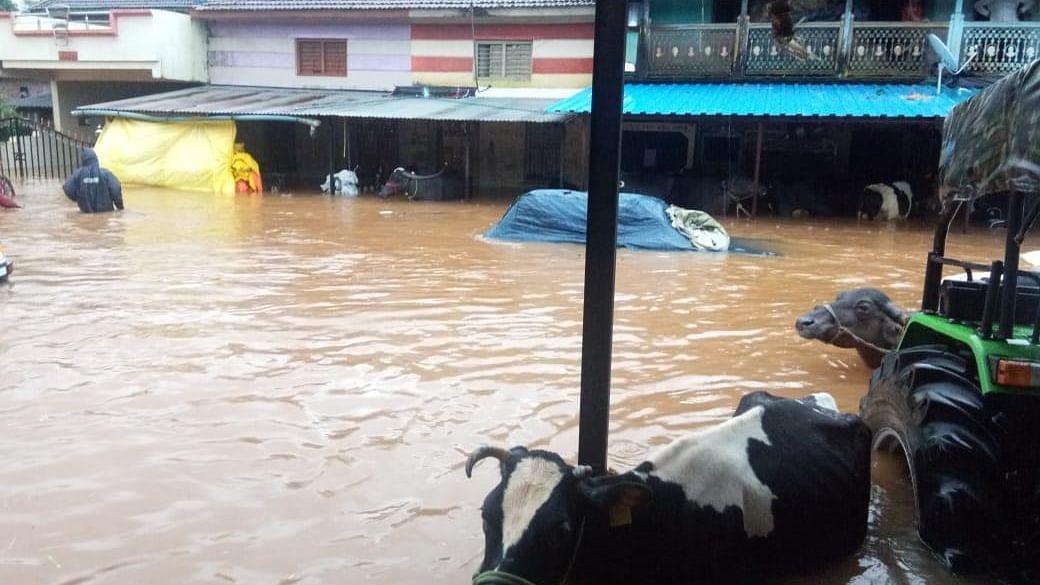قاتل سیلاب نے اَب تک 300 سے زائد لوگوں کی لے لی جان، 47 لاپتہ