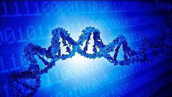 ڈی این اے: جسم کی بناوٹ کے راز کھولنے والی چابی ... وصی حیدر