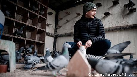 کبوتر بازوں کا سب سے بڑا عالمی تجارتی میلہ جرمن شہر ڈورٹمنڈ میں