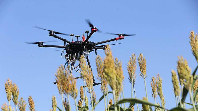 ڈرون سے ٹڈیوں پر پایا جائے گا قابو، کیڑہ مارنے والی ادویات کا ہوگا چھڑکاؤ
