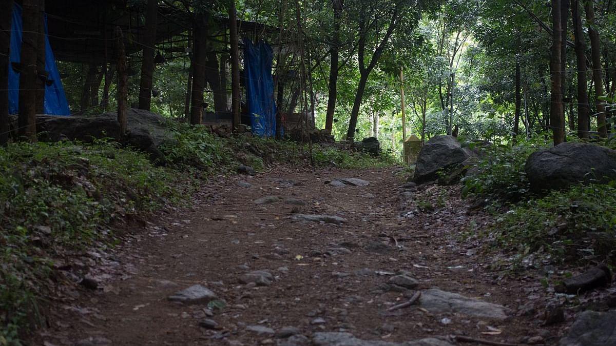 آندھرا: حاملہ خاتون کی موت، لاش کو جنگل میں چھوڑ دینے کا غیر انسانی واقعہ