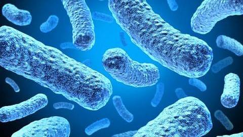'نئی قسم کا کورونا وائرس پہلے سے کہیں زیادہ تیزی سے پھیلتا ہے'