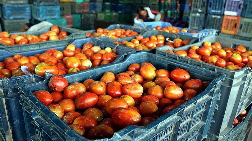 حیدرآباد: ٹماٹر کی قیمتوں میں اضافہ کا امکان