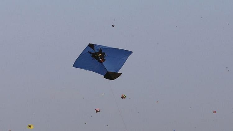 دہلی: پتنگ بازی کے شوق نے دو ہفتوں میں 150 سے زائد پرندوں کی لی جان!