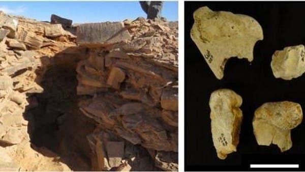 سعودی عرب میں سات ہزار سال پرانی جانوروں کی شکار گاہیں دریافت