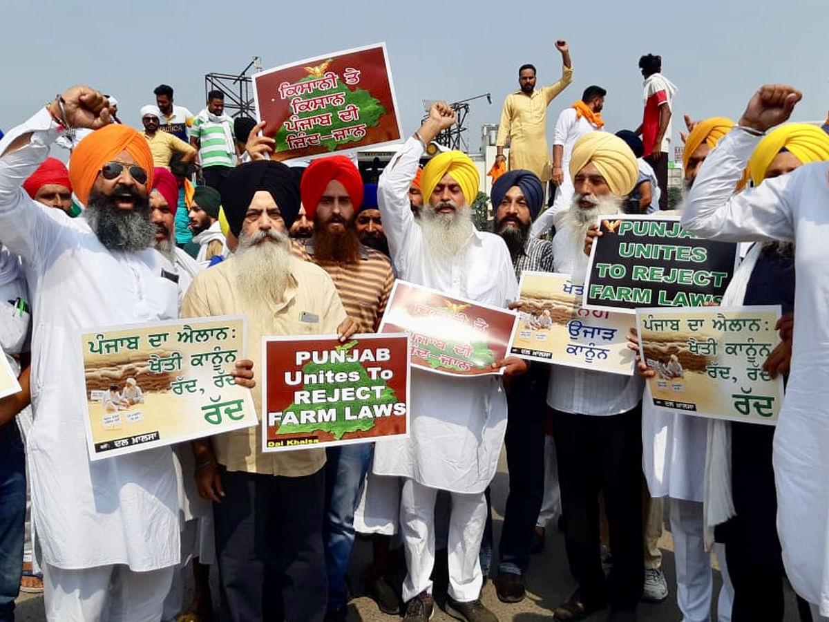 زرعی بلوں کے خلاف احتجاج کرتے پنجاب کے کسان / تصویر یو این آئی
