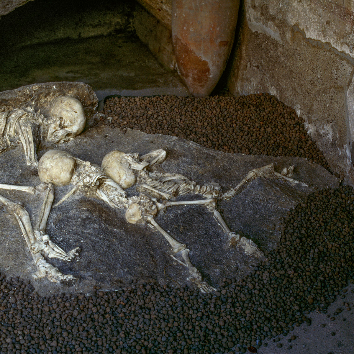 Human skeletons found in the House of Neptune and Amphitrite, Herculaneum (UNESCO World Heritage Site, 1997), Campania, Italy, Roman civilization, 1st century.