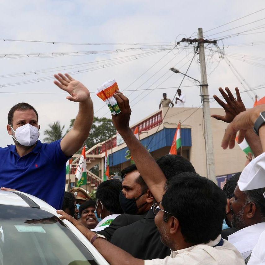 راہل گاندھی، تصویر @INCIndia