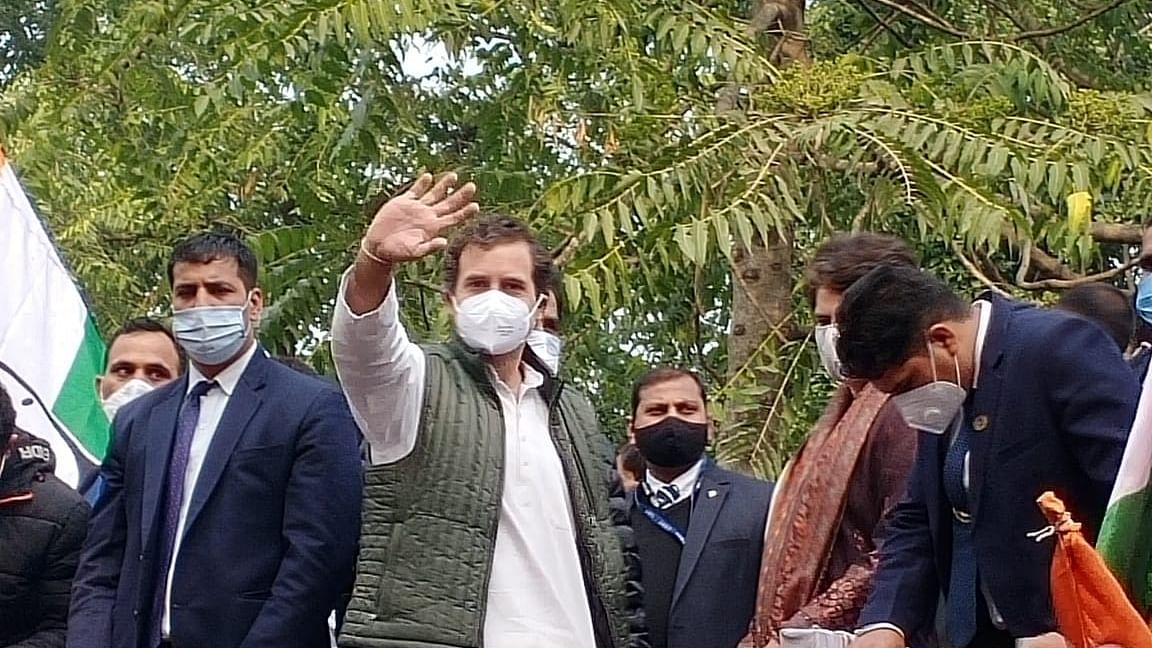 کانگریس لیڈر راہل گاندھی