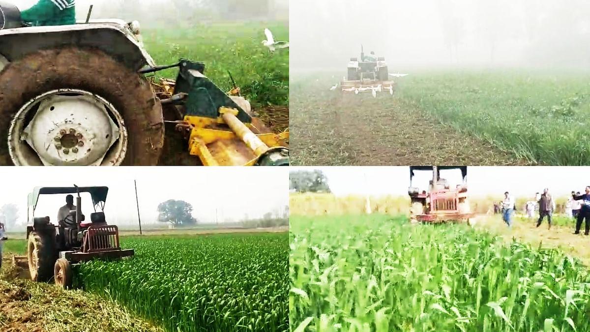 کسان تحریک: کسانوں کو فصل برباد کرتا دیکھ بھارتیہ کسان یونین مغموم!