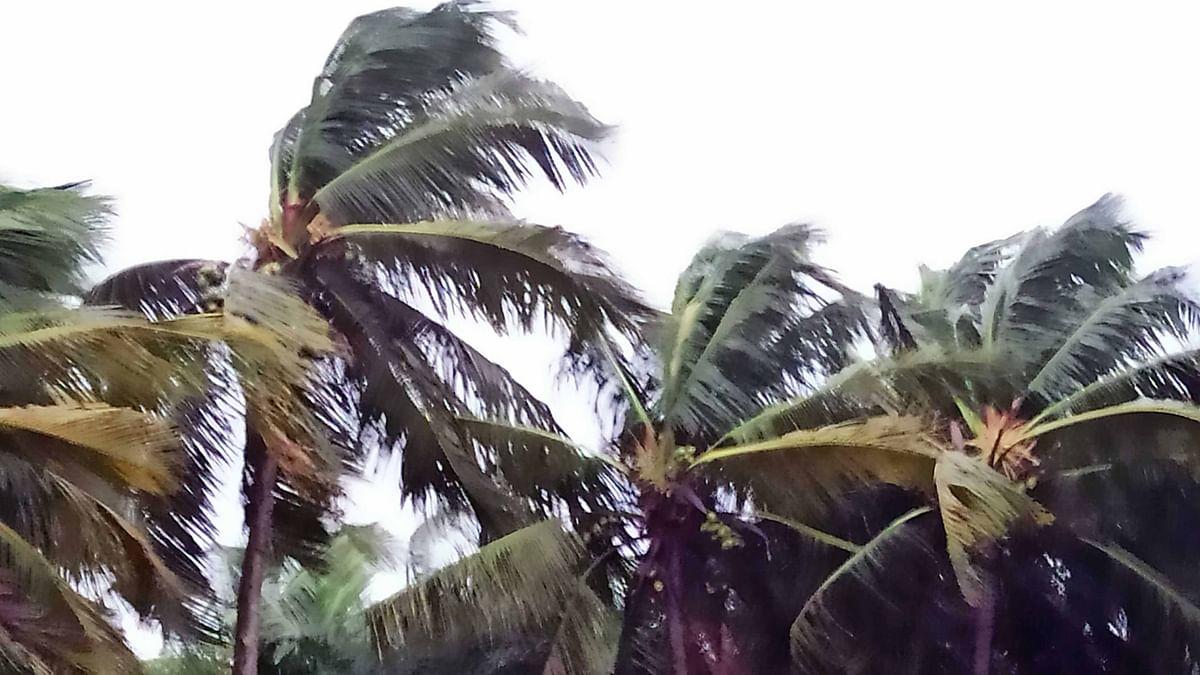 اوڈیشہ کے بالیشور اور دھرما میں ساحل سے ٹکرایا سمندری طوفان یاس، بڑے پیمانے پر نقصانات کا خدشہ