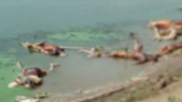 بہار کے بکسر میں گنگا میں تیرتی ہوئی لاشیں / آئی اے این ایس