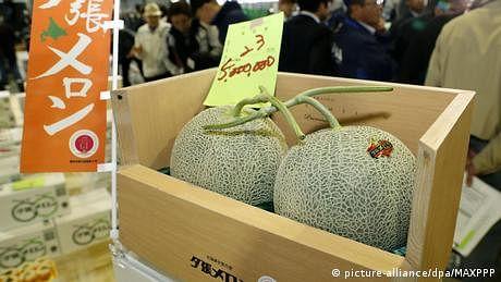 جاپانی لوگوں کا قیمتی پھلوں کی جانب مخصوص جھکاؤ؟