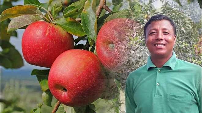 من کی بات: پی ایم مودی منی پور میں سیب کی پیداوار سے خوش