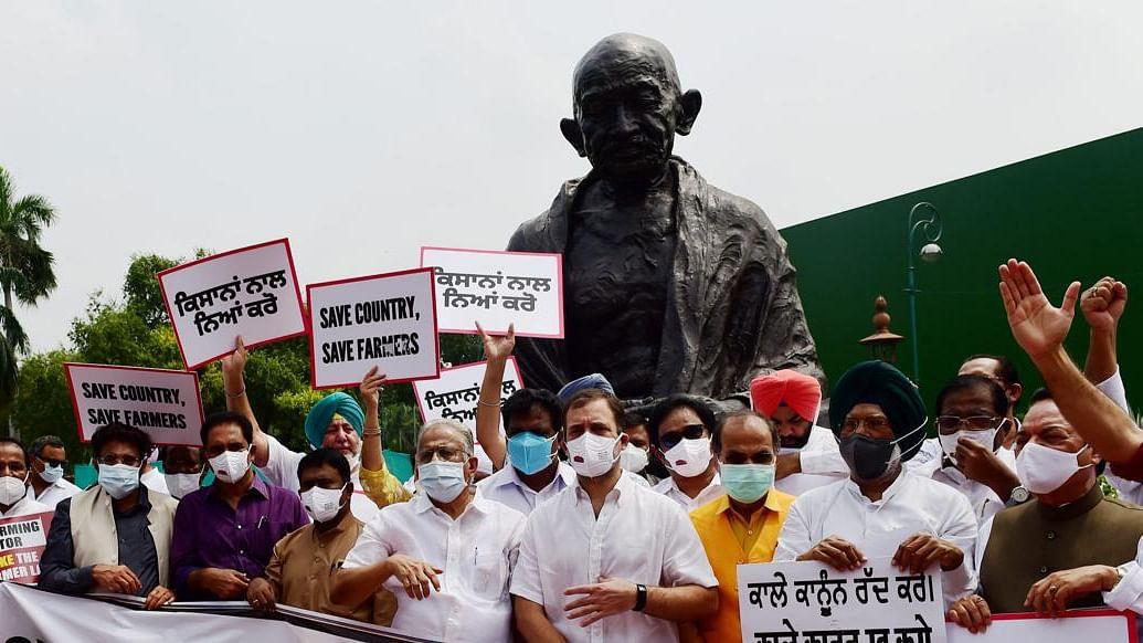 کسان تحریک: پارلیمنٹ احاطہ میں کانگریس کا مظاہرہ، راہل بولے 'ہم متحد کھڑے ہیں'