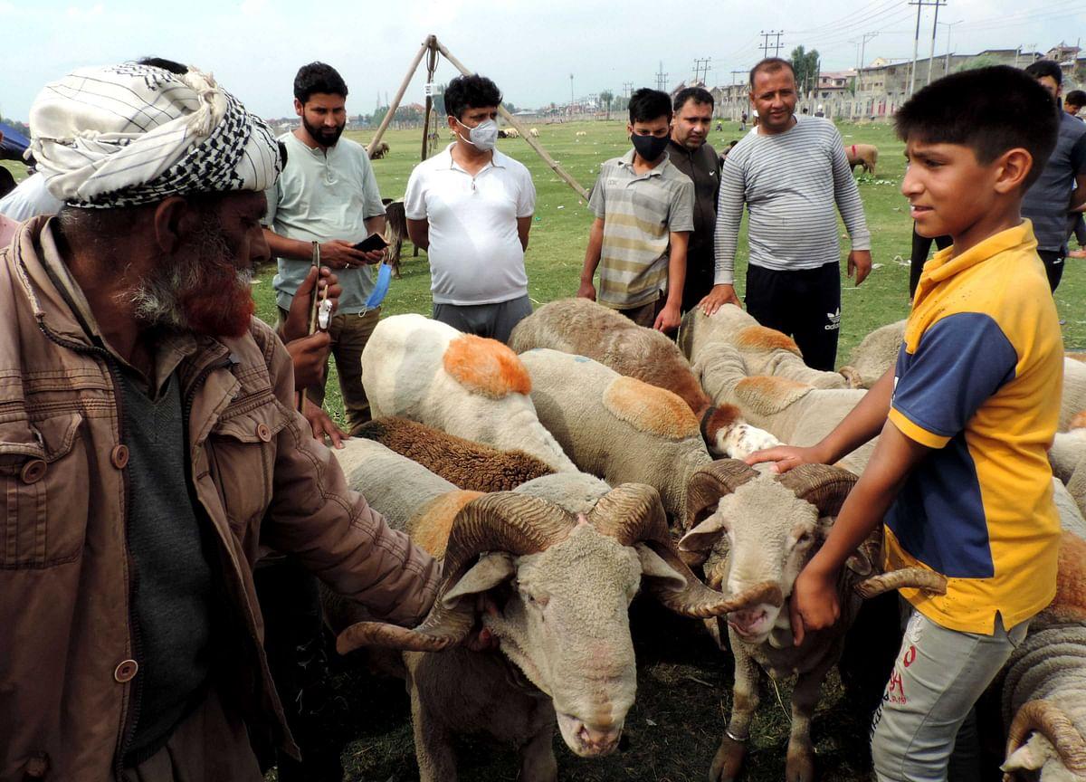 کشمیر: امسال بھی عید الاضحیٰ سے پہلے بازاروں میں روایتی گہما گہمی مفقود