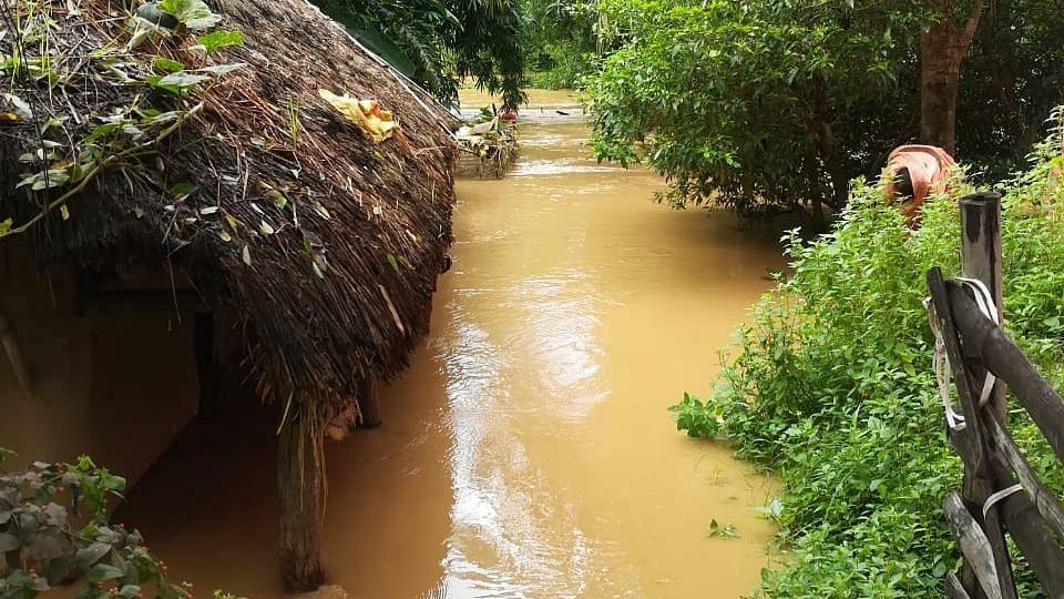 اوڈیشہ میں بھاری بارش سے 3 افراد کی موت، 19 لاکھ سے زیادہ افراد متاثر