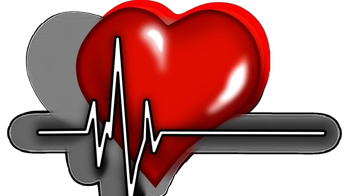دل، علامتی تصویر آئی اے این ایس