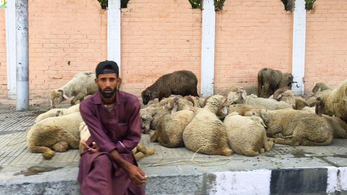 श्रीनगर ग्राउंड रिपोर्ट 6: बकरीद पर भी बाजार बेरौनक,पसरी है मायूसी