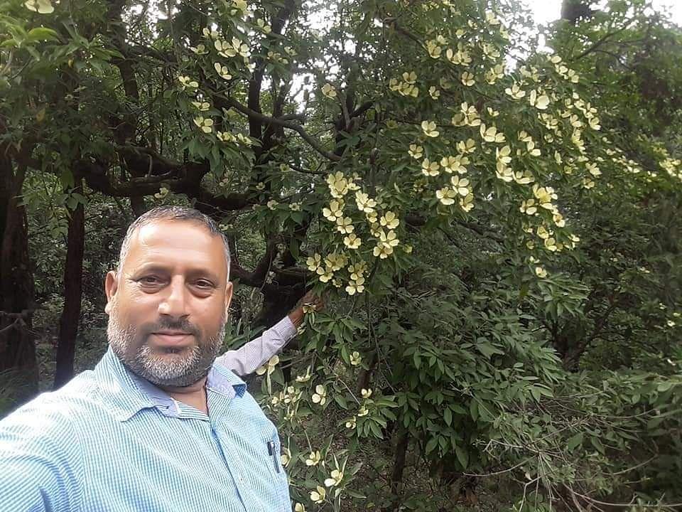उत्तरकाशी: 8 बरस  में गुलजार हुआ बमोर का पौधा