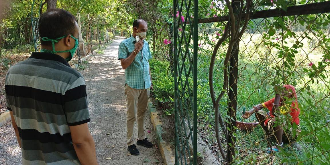 खुल गया उदयपुर का ऐतिहासिक गुलाबाबाग