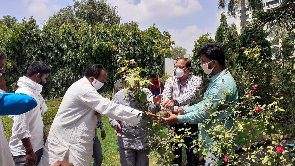 पूर्व प्रधानमंत्री चंद्रशेखर को युवाओं ने किया याद, स्मृतियों को संरक्षित करने के लिए पौधरोपण भी