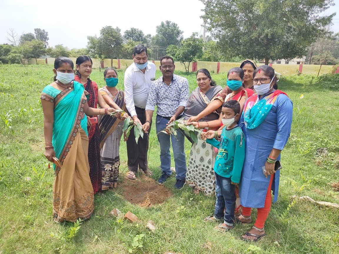 हरियर सूरजपुर अभियान को आगे बढ़ा रही महिला पार्षद, रोपे गए 101 फलदार वृक्ष..