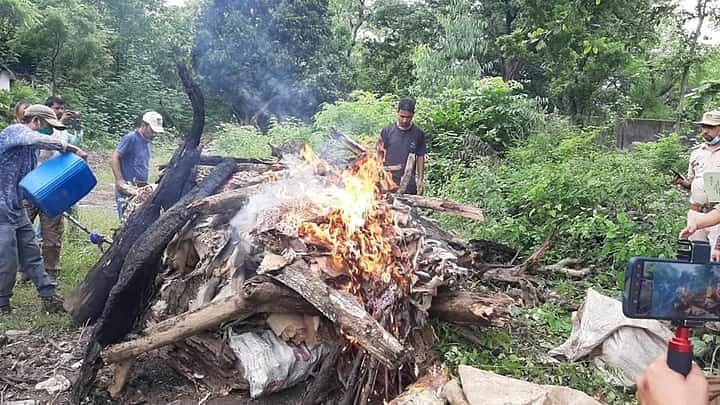 कॉर्बेट पार्क में जलाई गईं जब्तशुदा खालें और वन्यजीवों के अंग