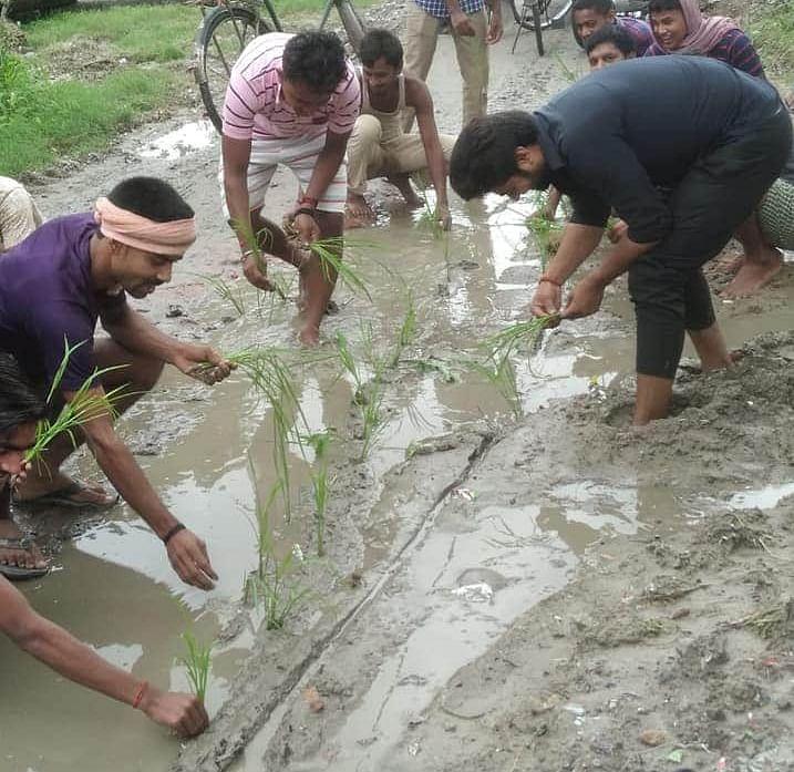 आजिज आकर ग्रामीणों ने जर्जर  सड़क पर की धान की रोपनी