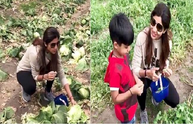 हेल्थ और प्लैनेट के लिए शिल्पा शेट्टी ने पूरी तरह से अपनाया शाकाहारी जीवन, शेयर की वीडियो