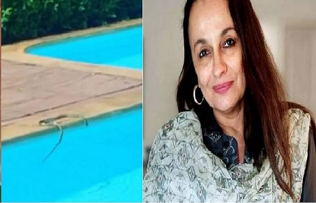 आलिया भट्ट की मां सोनी राजदान के स्विमिंग पूल में दिखा सांप, नीतू कपूर ने कही ये बात