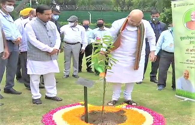 अमित शाह ने अपने आवास पर पौधरोपण कर किया 'वृक्षारोपण अभियान-2020' का शुभारंभ