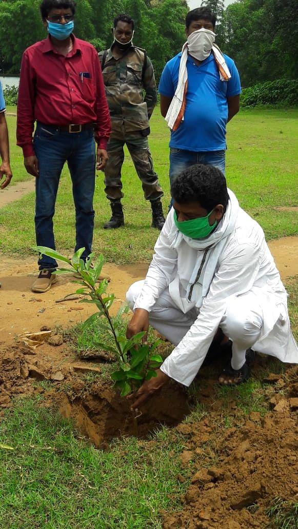 मानव जाति को बचाने के लिए पौधरोपण  जरूरी: कोचे मुंडा