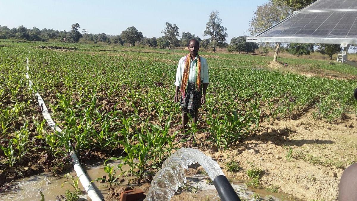 सौर ऊर्जा से किसान सुमलु के खेतों में  हरियाली : बरसात पर निर्भरता हुई कम