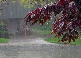 रिमझिम बारिश से सामान्य से कम हुआ तापमान, मौसम हुआ सुहाना