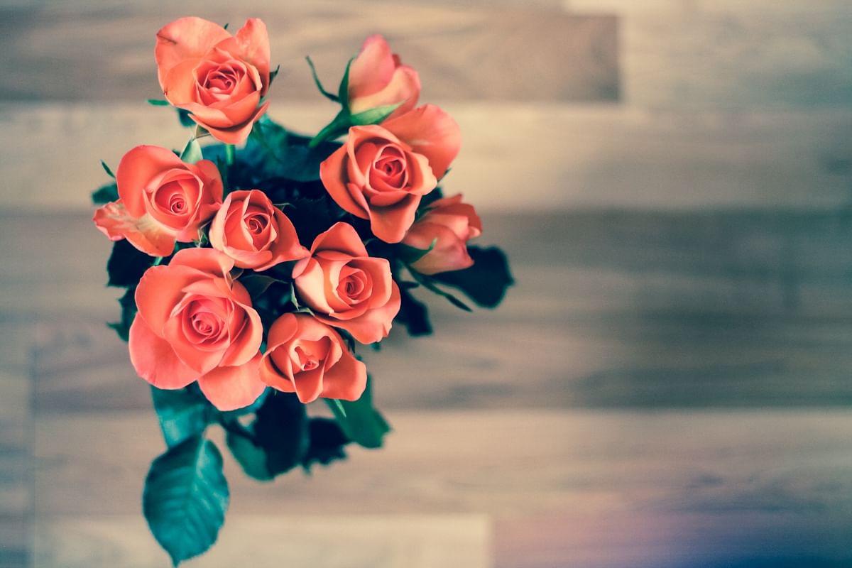सपने में गुलाब देखने का मतलब - Dream Of Rose Meaning