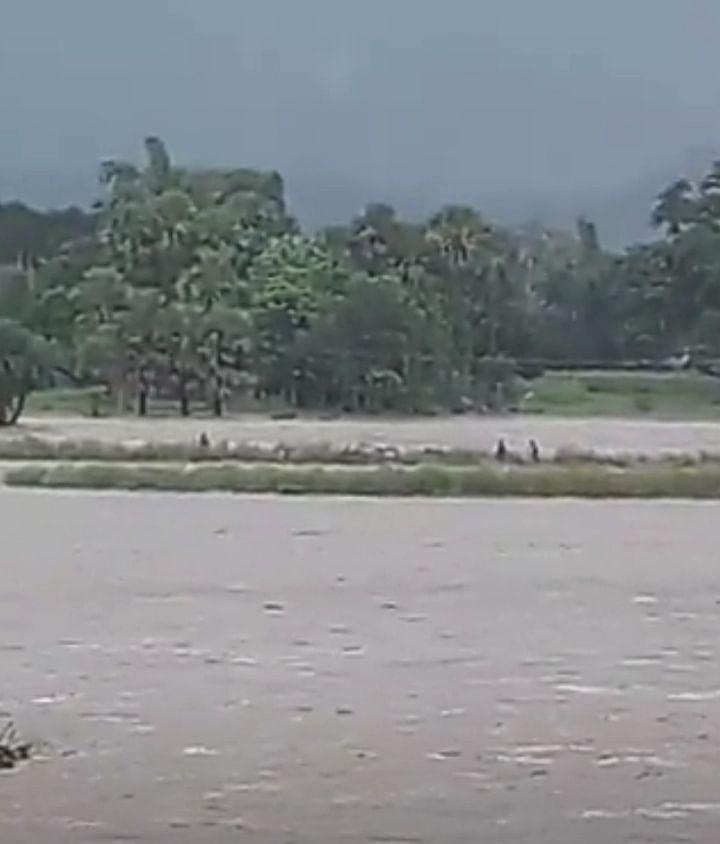 नदी में आयी अचानक बाढ़  जिसमें फंसे है आठ चरवाहे।