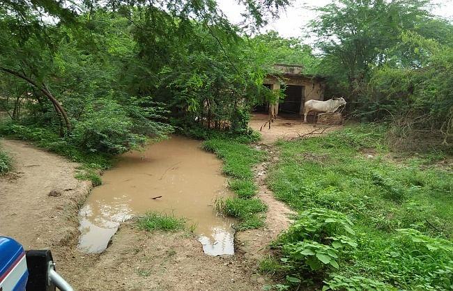 केन्द्रीय राज्य मंत्री का पैतृक गांव पत्योरा विकास की रफ्तार में पीछे