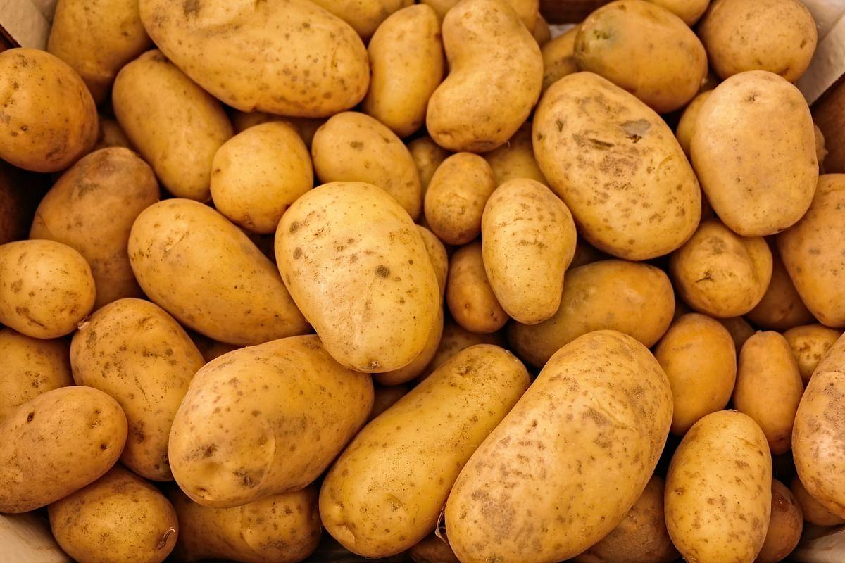 सपने में आलू देखने का मतलब - Dream Of Potato Meaning