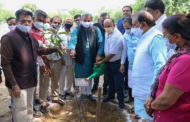भाजपा प्रदेश अध्यक्ष और महापौर ने केशवपुरम में किया पौधरोपण