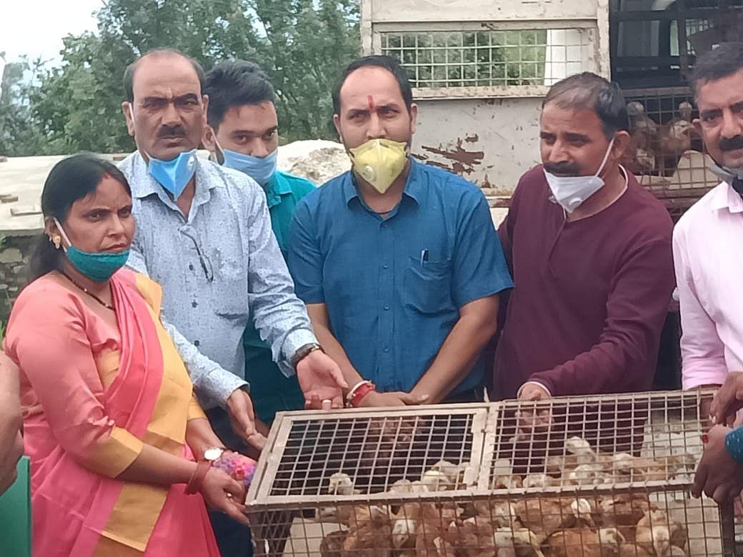 पशुपालन से स्वरोजगारी बने युवा: प्रदीप रमोला