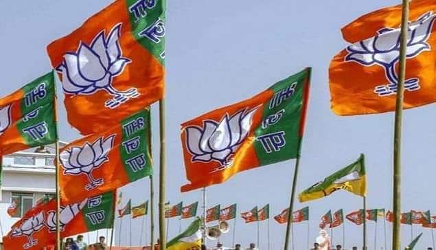 विधानसभा चुनाव : भाजपा की हालत एक अनार सौ बीमार वाली, हो सकता है भितरघात