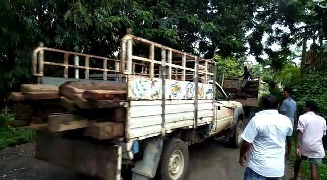 वन विभाग ने भारी मात्रा में अवैध लकड़ी किया जब्त