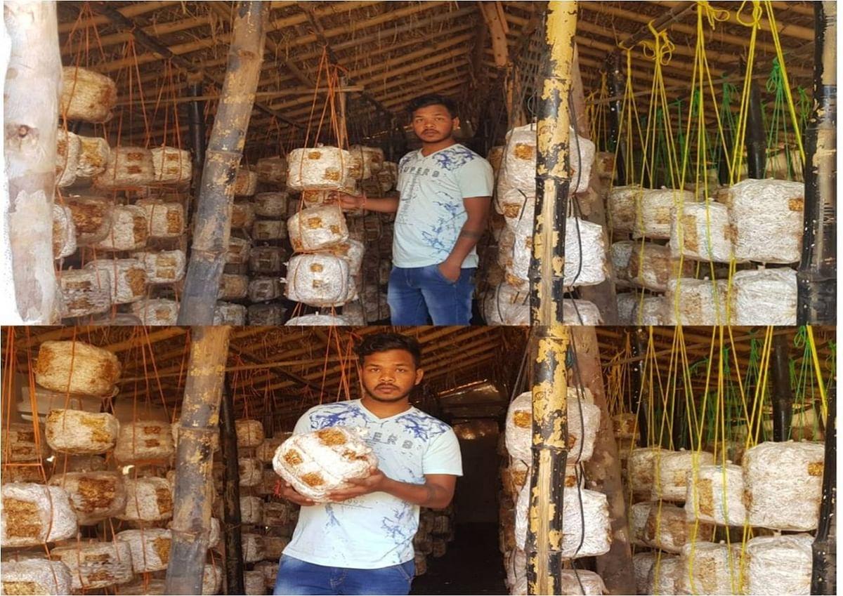 छत्तीसगढ़ के मशरूम उत्पादक युवा किसान सौरभ जंघेल को राष्ट्रीय सम्मान