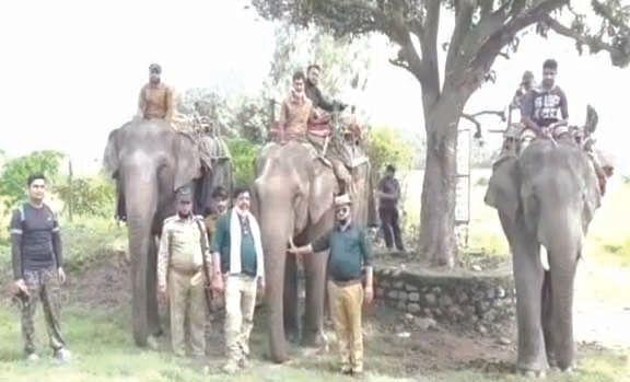 राजाजी पार्क में हाथी भी गश्त में शामिल