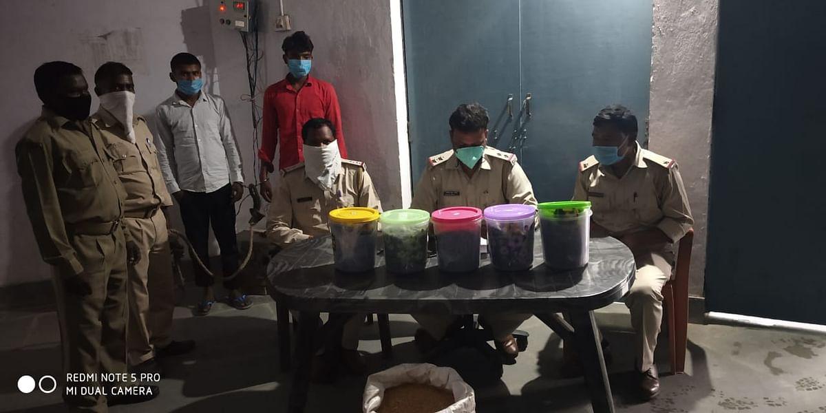 कार से 20 किलो अफीम बरामद, दो गिरफ्तार